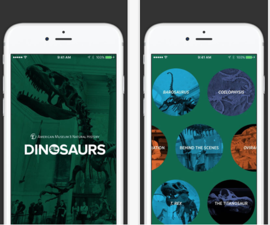 Dinosaurs: The American Museum of Natural History Collections By American Museum of Natural History