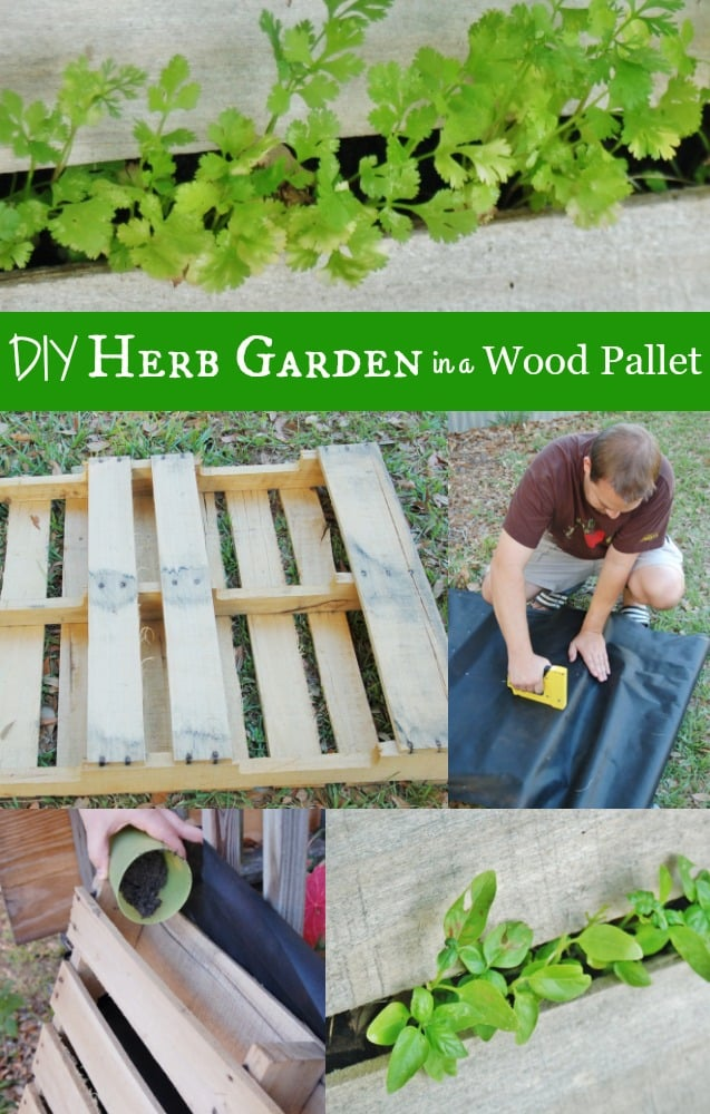 DIY Herb Garden with a Recycled Wood Pallet