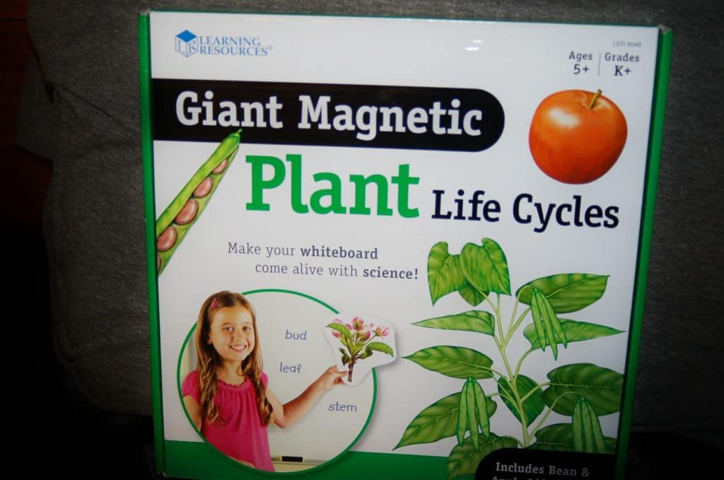 Giant Magnetic Plant Life Cycles Review