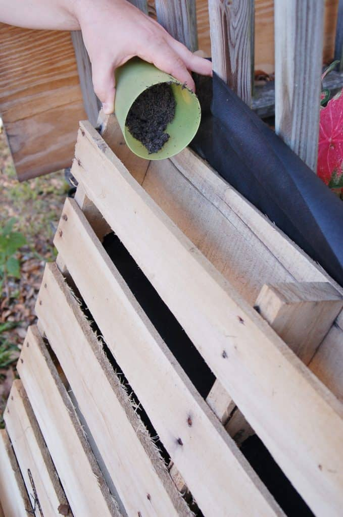 DIY Garden from Recycled Wooden Pallet