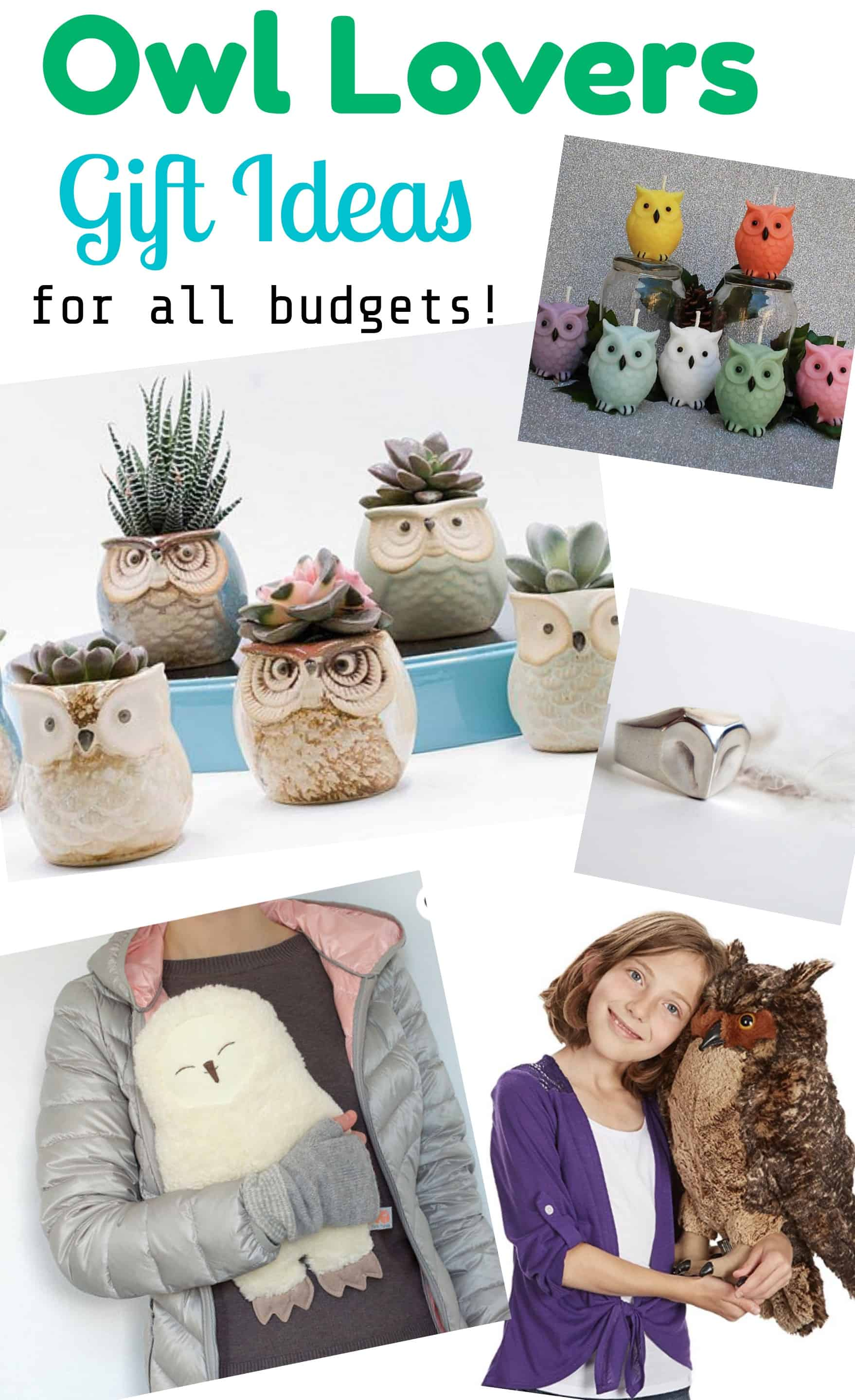 Owl Lovers Gift Ideas for All Budgets