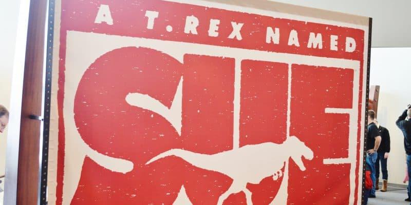 Meet Sue – a Famous T-Rex