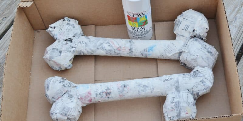 DIY Paper Mache Dinosaur or Halloween Bones
