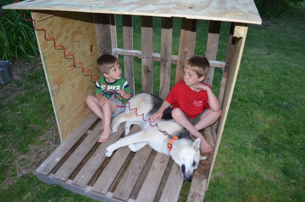Diy dog house from recycled wooden pallets tutorial for How to build a playhouse out of pallets