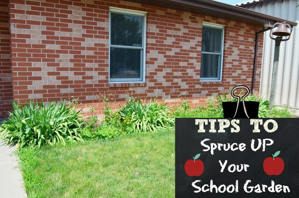 5 Ideas on How to Spruce up your School Garden