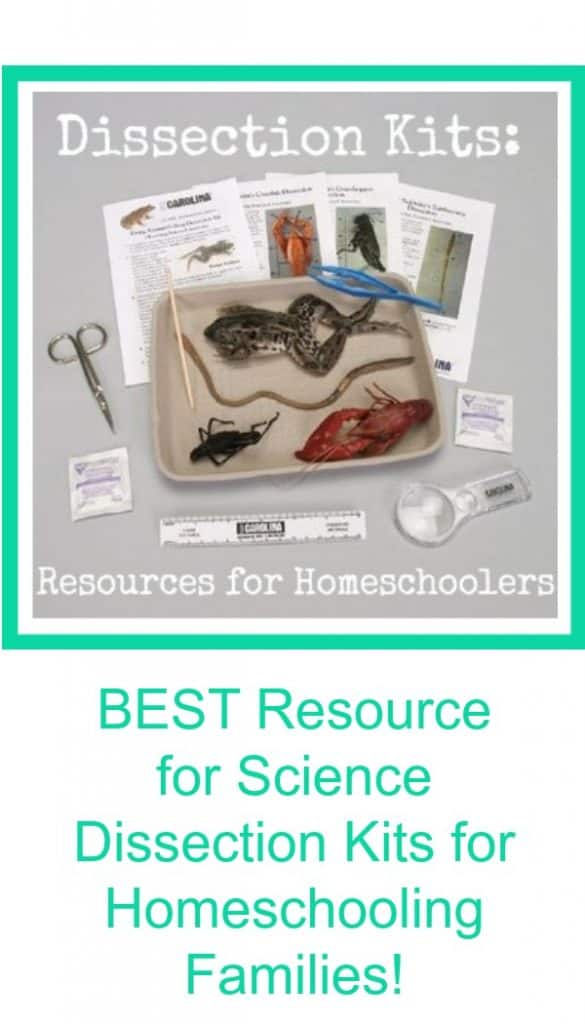 Best Resource for Homeschool Families for Science Dissection Kits for Homeschoolers