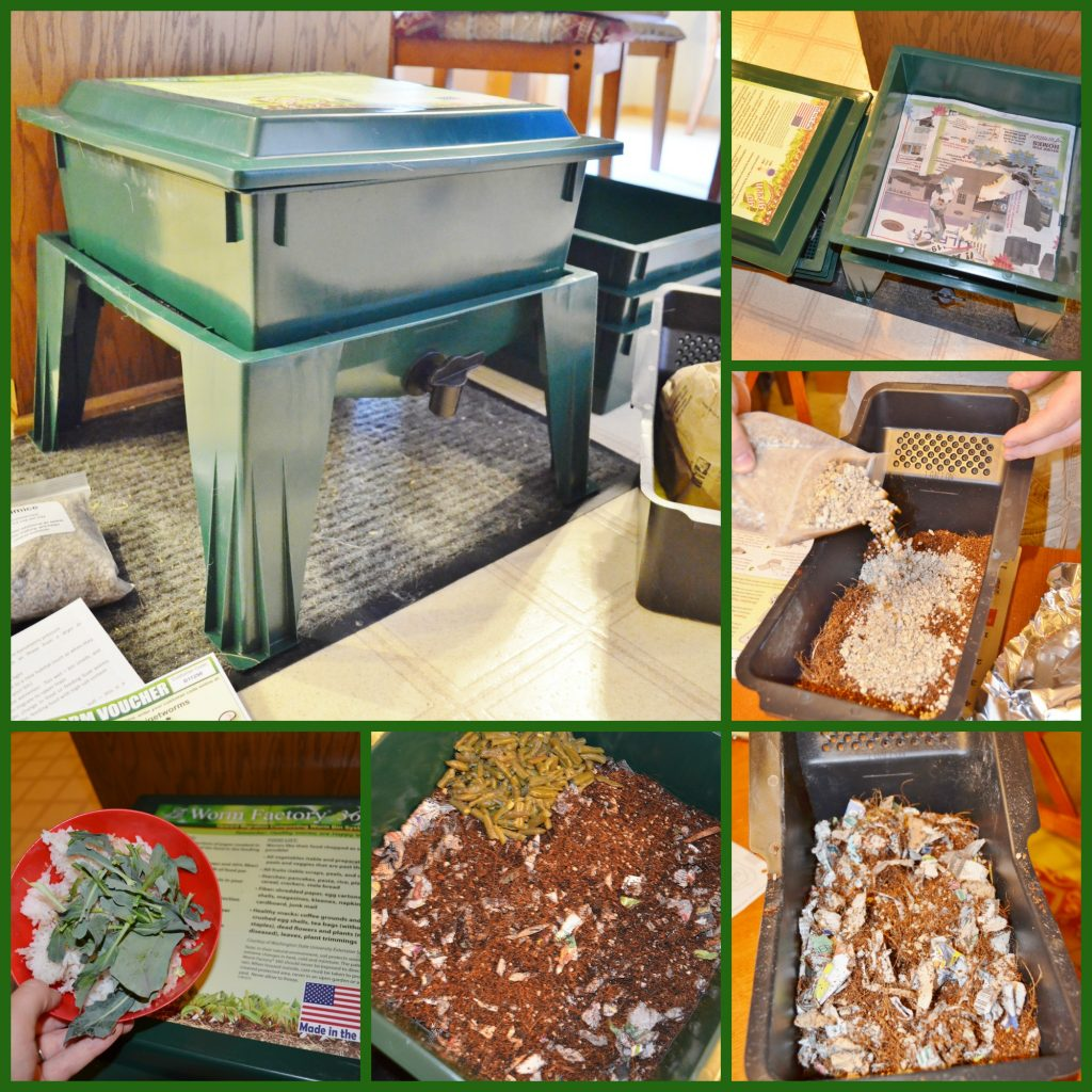 worm factory composting collage