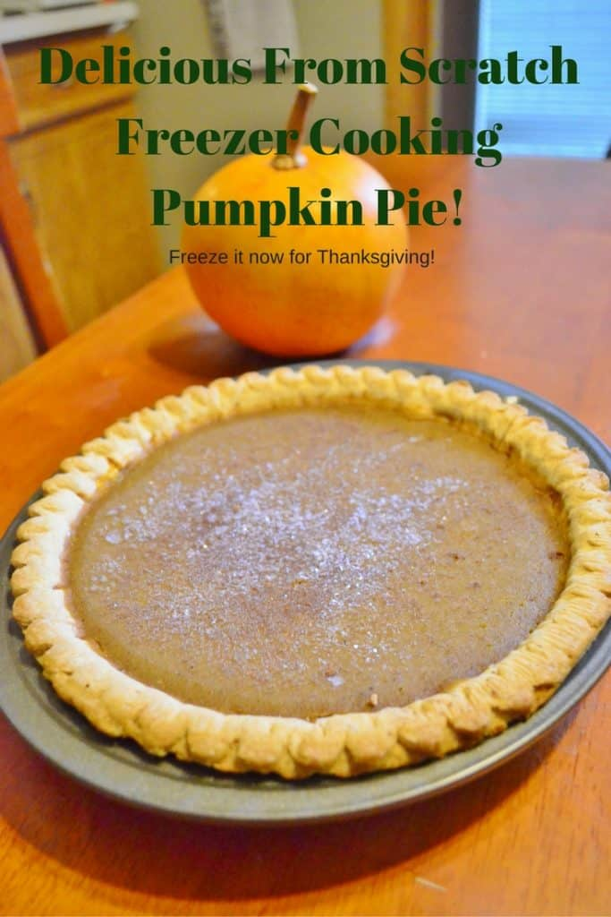 Delicious From Scratch Freezer Pumpkin Pie