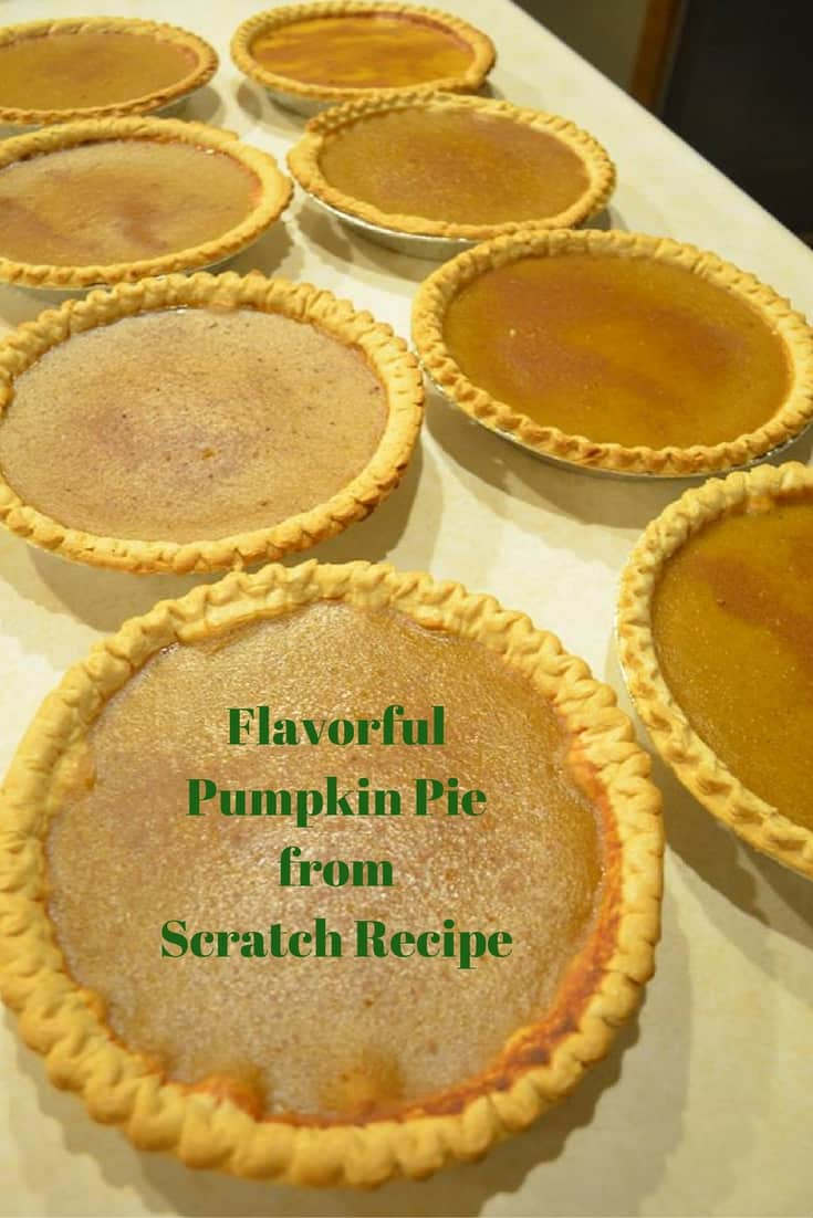 Flavorful Pumpkin Pie from Scratch Recipe