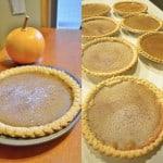 pie pumpkins and pumpkin pies homemade