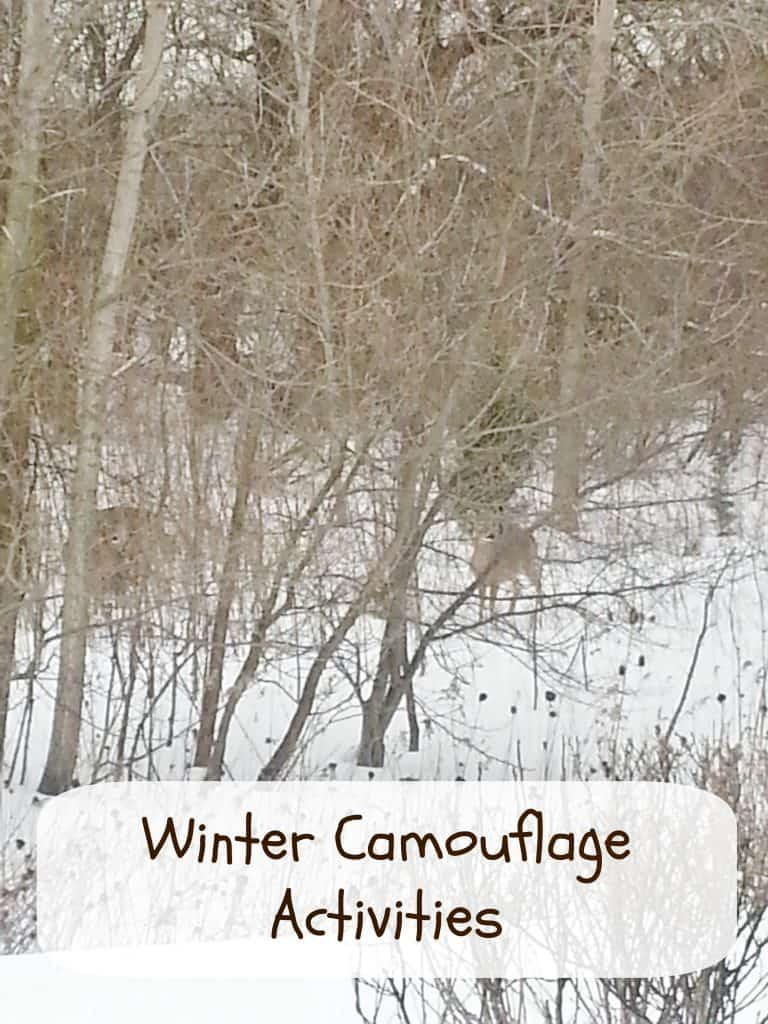 winter camouflage activities for kids. Black Bedroom Furniture Sets. Home Design Ideas