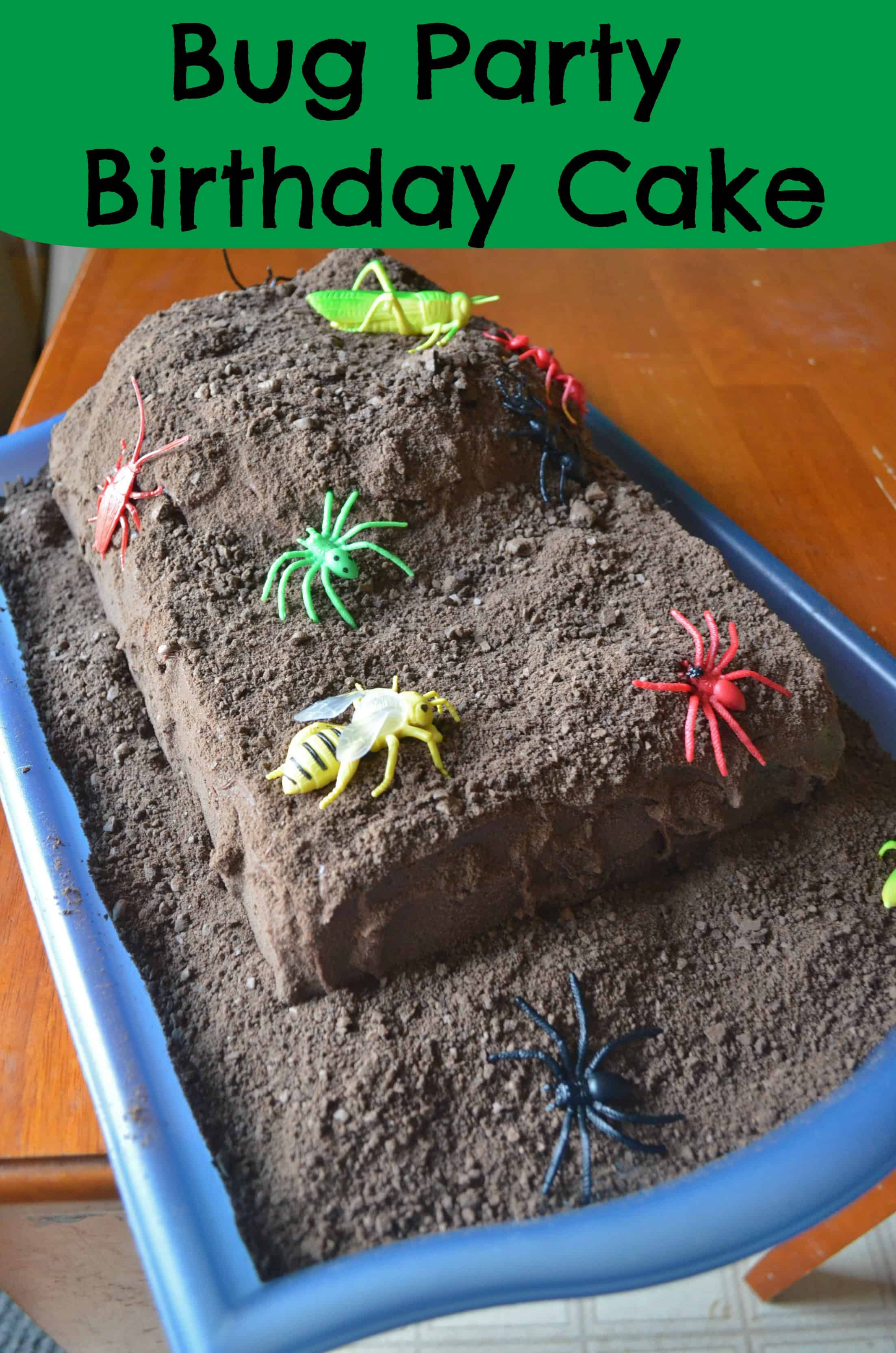 Surprising Bug Party Birthday Cake Tutorial Step By Step Photo Tutorial For Kids Funny Birthday Cards Online Overcheapnameinfo