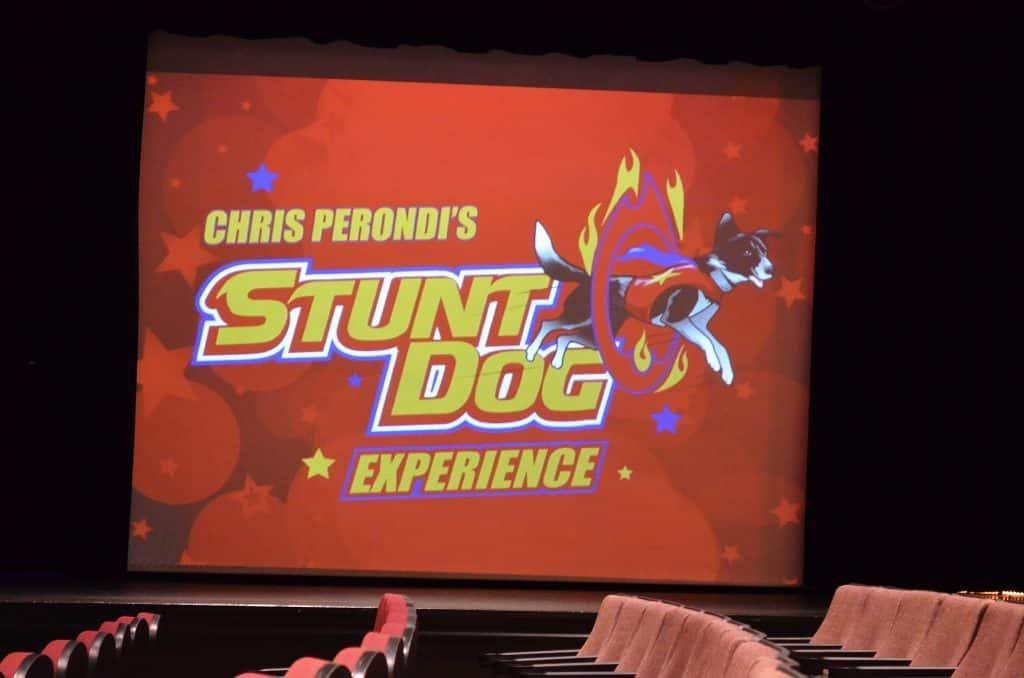 Stunt Dog Experience, Branson MO
