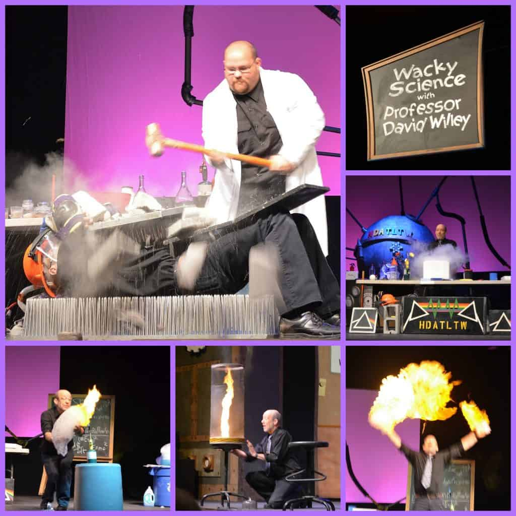 mad science branson Collage