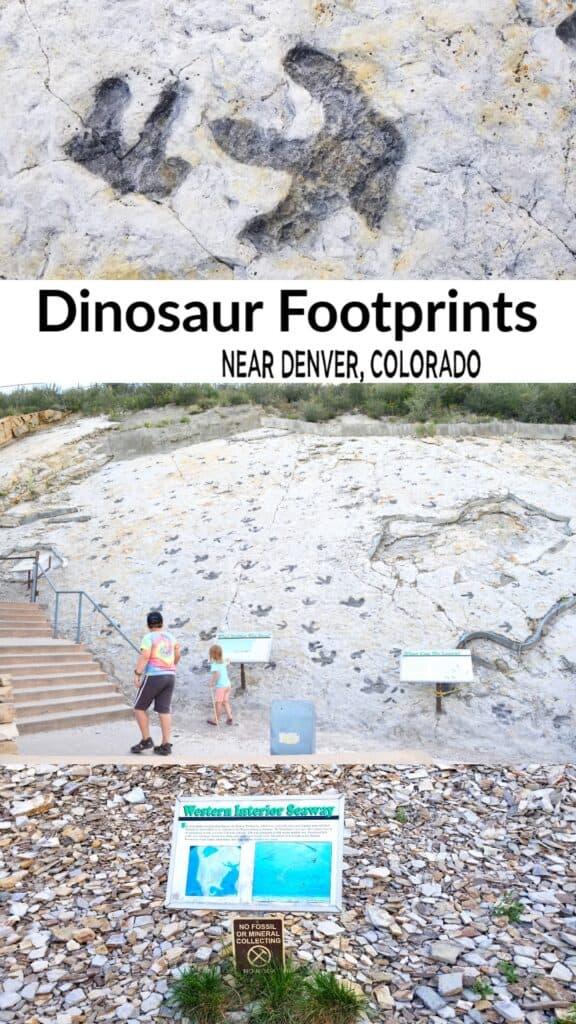 Dinosaur Ridge near Denver Colorado