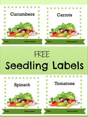 Free Printable Garden Seedling Labels - Veggies & Blank Make your Own Label