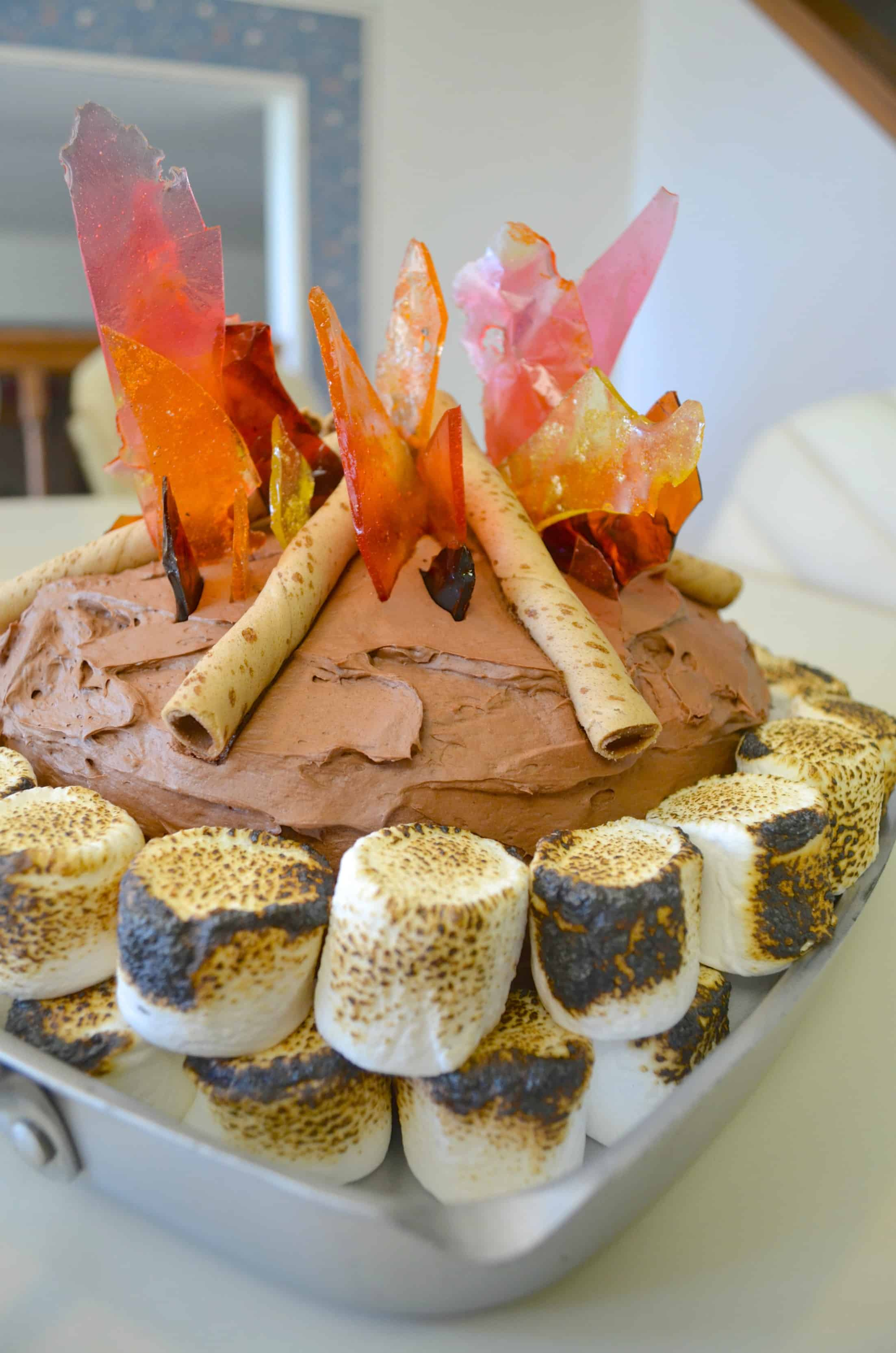 How to Make a Campfire Camping Party Birthday Cake Tutorial
