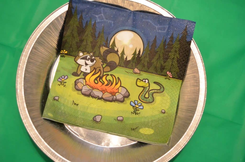 camping napkin and tin foil plate for birthday party