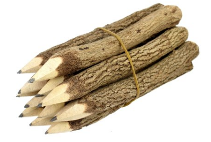 Branch and Twig Pencils for Camping Birthday Party Favors