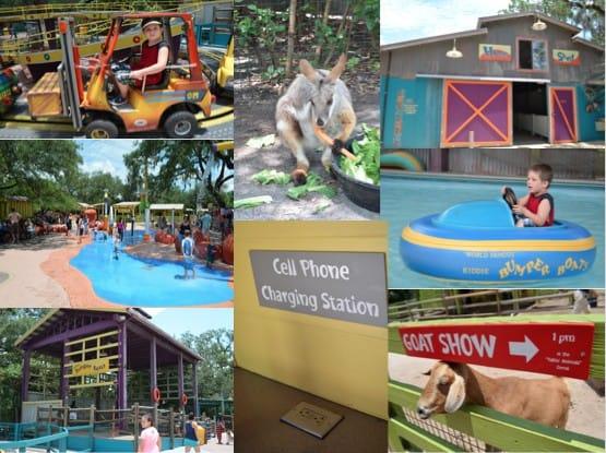 Lowry Park Zoo Wallaroo Station