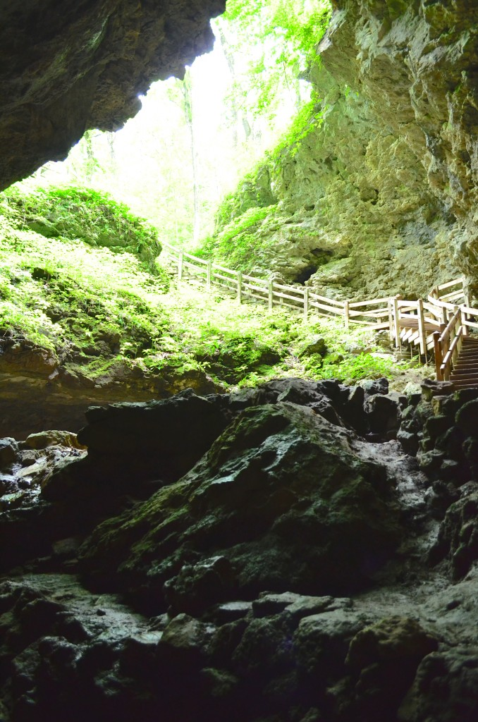 entrance to a cave in Maquoketa State Park Iowa