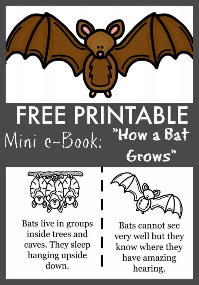 FREE Bat Printable ebook coloring pages for kids