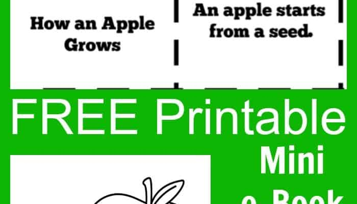Free Printable Apple ebook