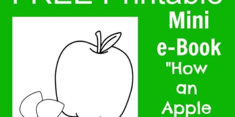 free apple printable life cycle book