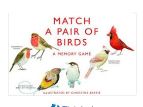 Match a pair of Birds Memory Match Game for Preschool