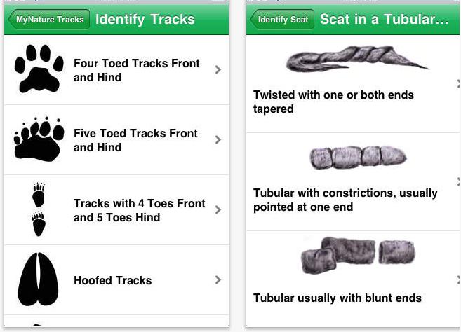 Nature Tracks app