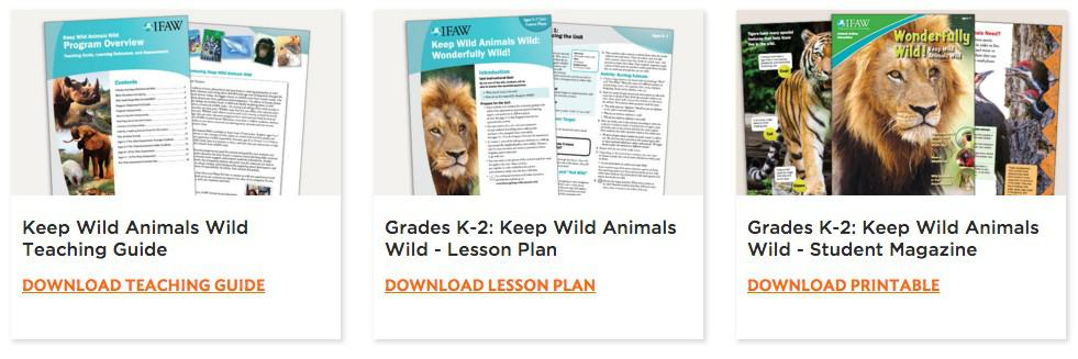 Wildlife Animal Resources for Classroom Curriculum