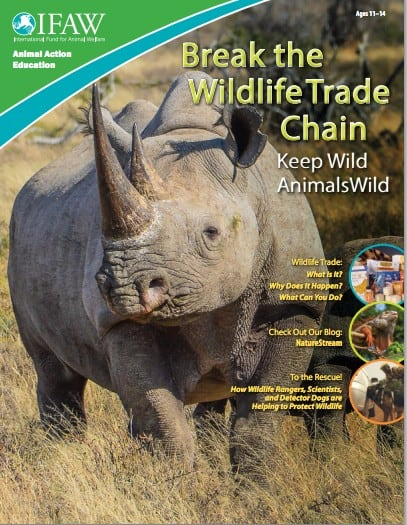 Free Wildlife Conservation Classroom Materials
