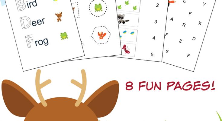 Woodland Forest Friends Printable Preschool Worksheets