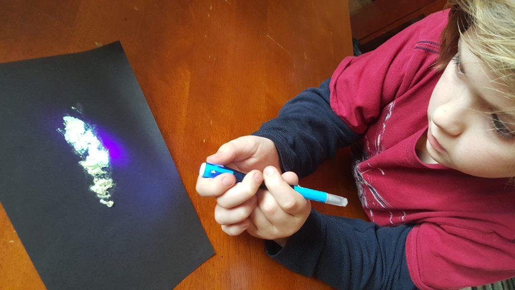 Steve Spangler Science bacteria experiment