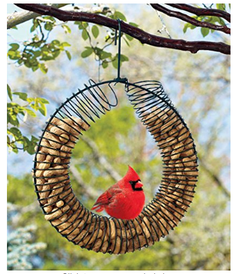 Peanut Wreath Bird Feeder