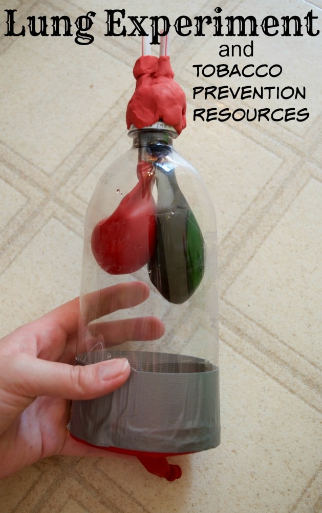 finished lung science experiment bottle photo