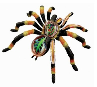 Tarantula Anatomy Science Model Kit for Kids