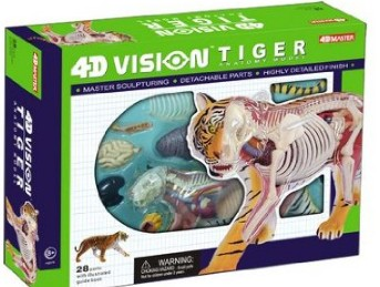 Tiger Anatomy Model Science Kit for Kids