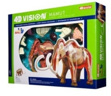 Woolly Mammoth Anatomy Model Science Kit for Kids