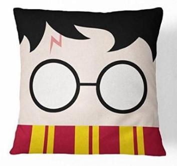 Harry Potter head pillow