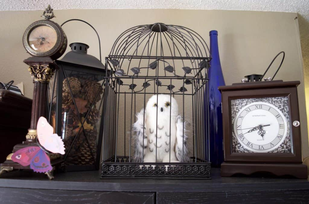 hedgewig harry potter owl in birdcage