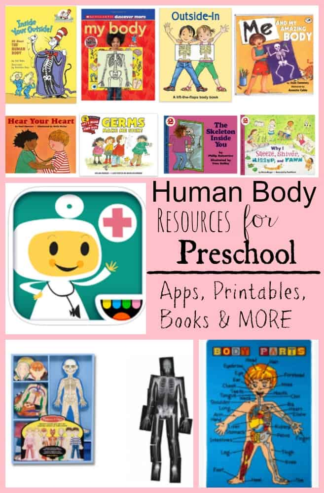 Human Body Resources for Preschool