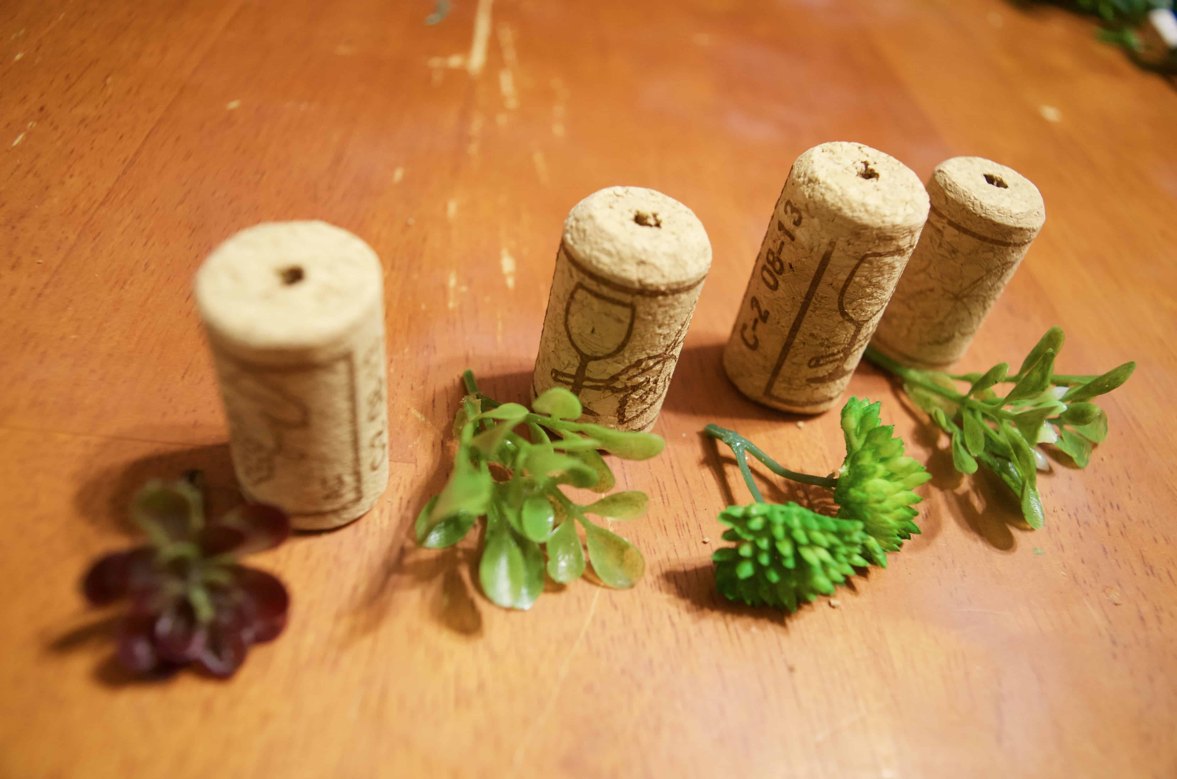 wine cork and fake green succulents