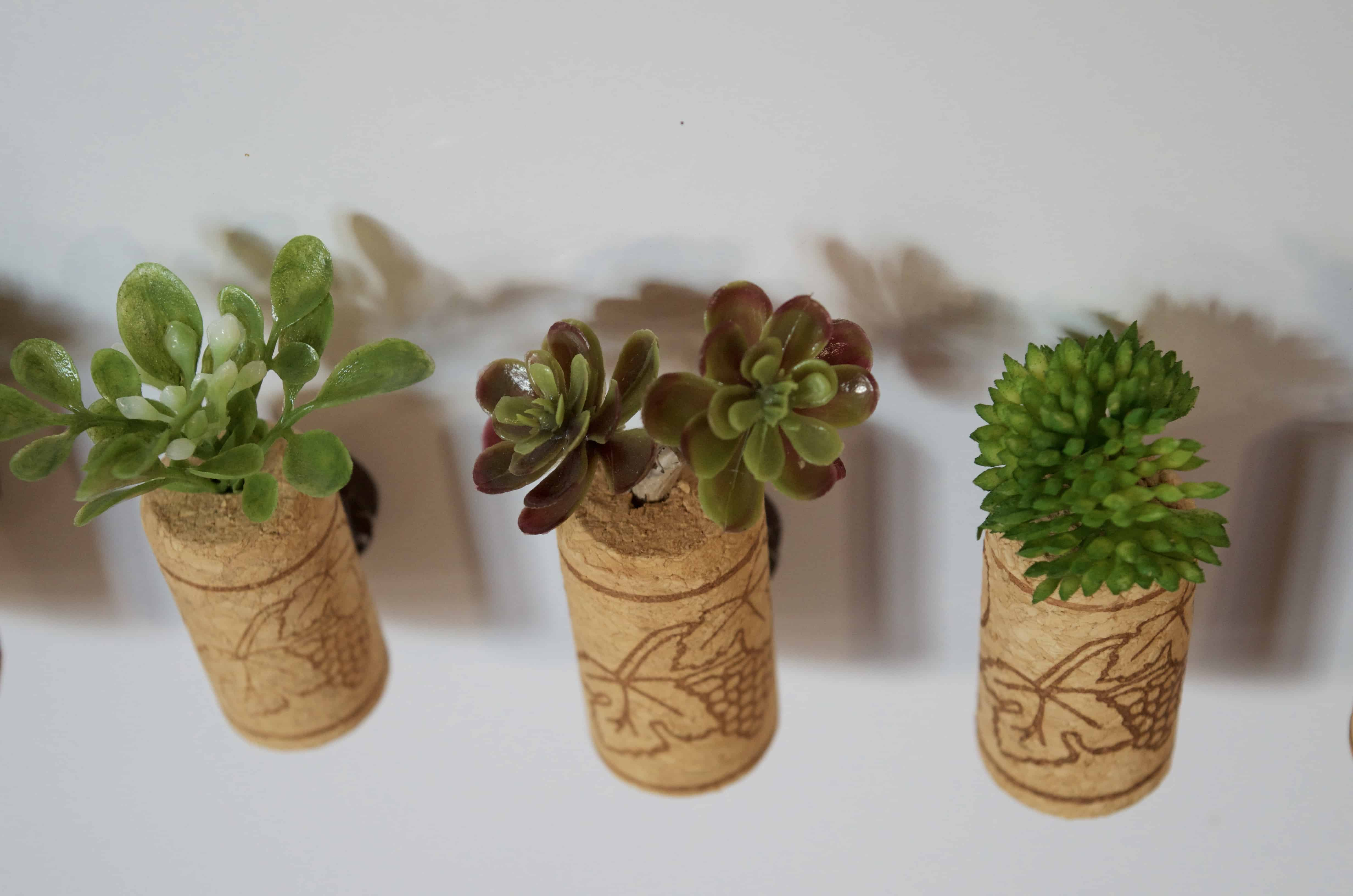 how to make fake Succulent Magnets in wine corks