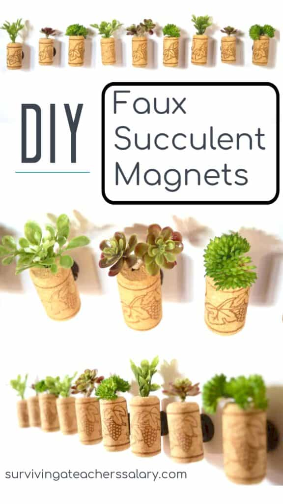 how to make succulent magnets