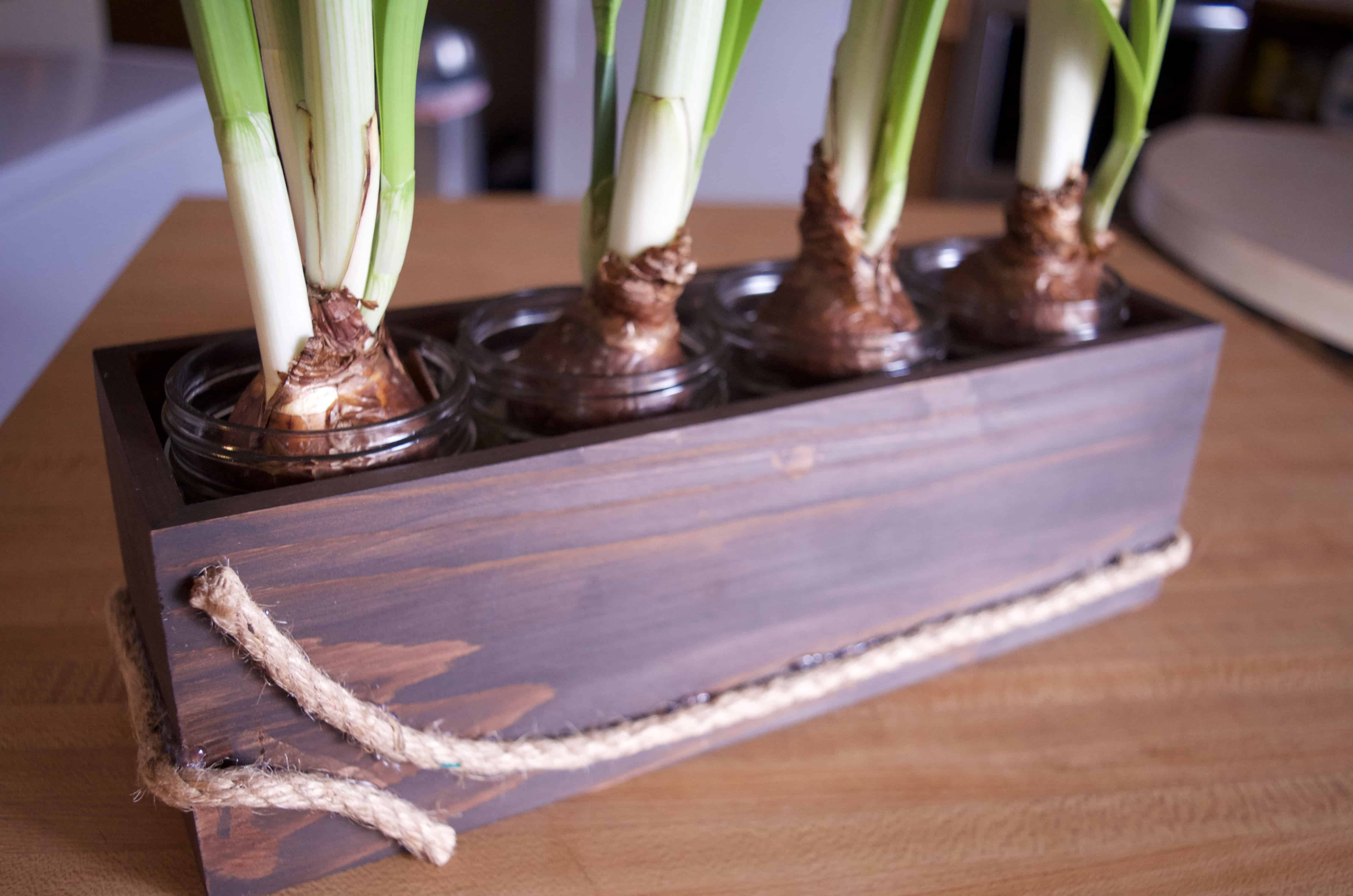 Stained Your Own Wood Flower Box Home Decor