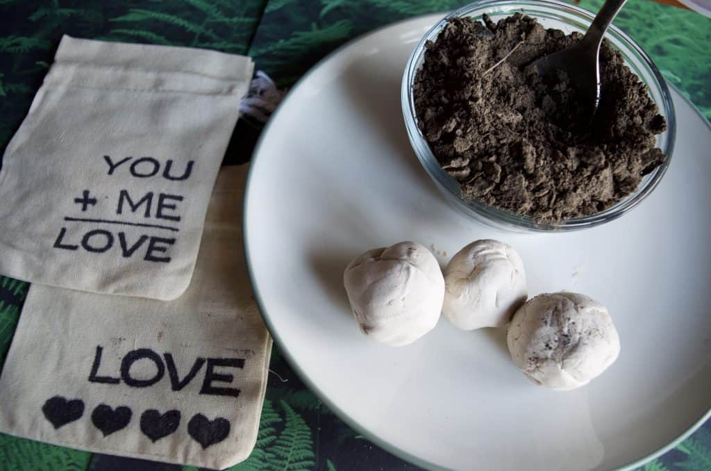 DIY Seed Bomb Garden Gift Idea with DIY Custom Bag