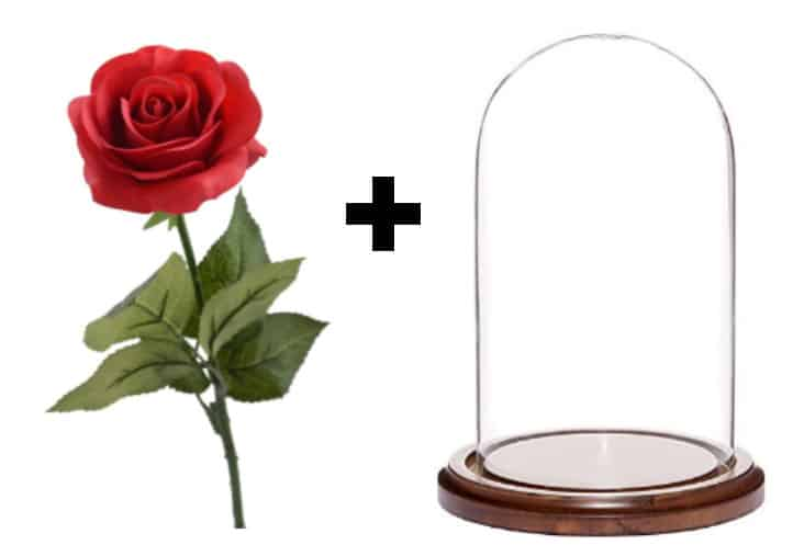 DIY Beauty & the Beast Glass Cloche Dome Rose