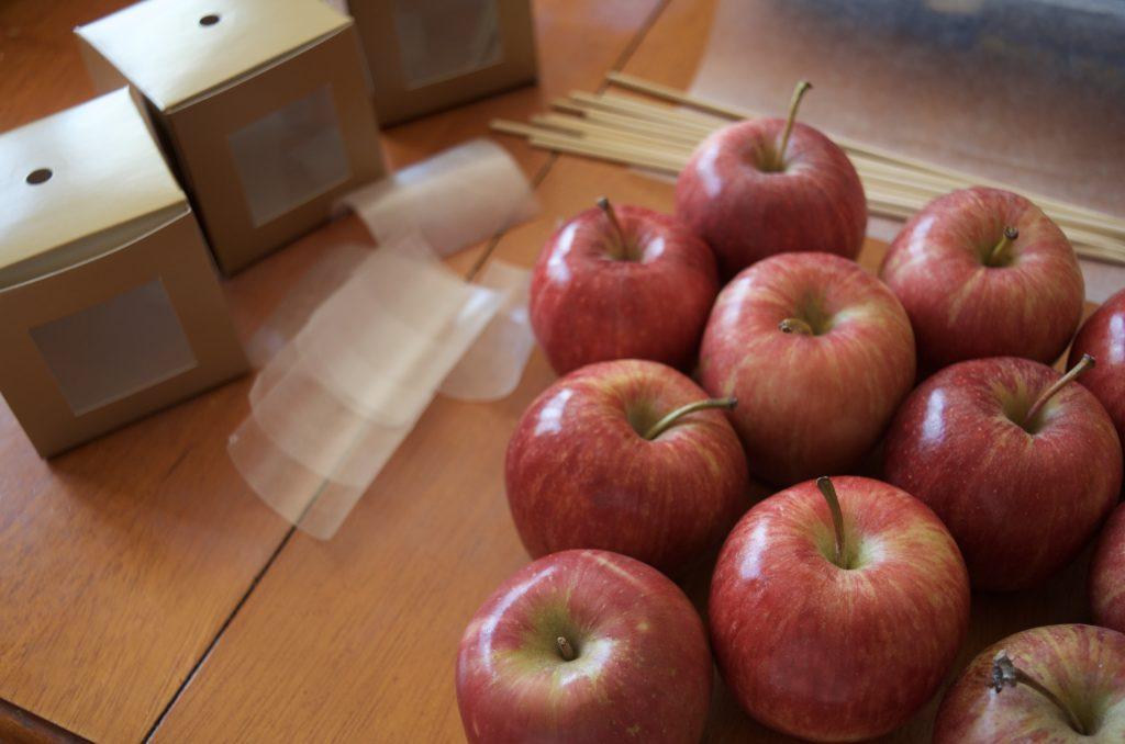 Easy Gourmet Chocolate Dipped Apples Homemade Recipe
