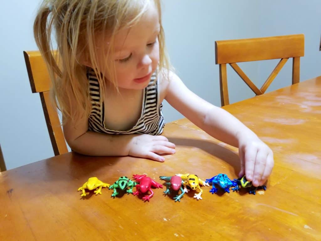 little girl playing with poison dart frogs on table